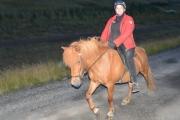 Askja lokareiðtúr 5-9-2014-13