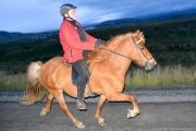 Askja lokareiðtúr 5-9-2014-16
